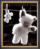 Teddy Bear Drying Poster by U. Dresing