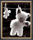 Teddy Bear Drying Poster by U. Dresing
