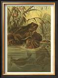 Pond Frogs Prints by Louis Prang