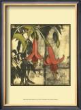 Mini Fuchsia and Silhouette IV Prints by Jennifer Goldberger
