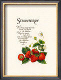 Strawberry Posters by G. Phillips