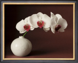 Orchid and white vase Posters by Florence Rouquette