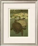 Pond Turtles Art by Louis Prang