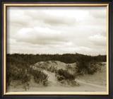 Ocracoke Dune Study II Limited Edition Framed Print by Jason Johnson