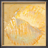 Shoreline Shells IV Poster by Lorraine Vail