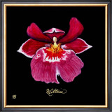 Vivid Orchid VIII Posters by Ginny Joyner