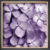 Bunch of Flowers IV Prints by Tony Koukos