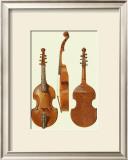 Antique Violas II Prints by William Gibb