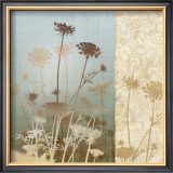 Delicate Fields II Prints by Conrad Knutsen