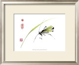 Grasshopper Prints by Nan Rae