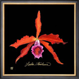 Vivid Orchid II Art by Ginny Joyner