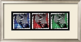 Pop Zebra Prints by Susann &amp; Frank Parker