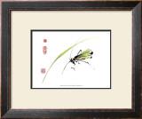 Grasshopper Print by Nan Rae