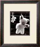 Teddy Bear Drying Posters by U. Dresing