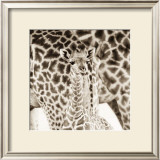 Precious Moments II Print by Susann & Frank Parker