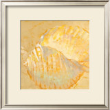 Shoreline Shells IV Art by Lorraine Vail