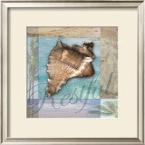 Restful Shell Print by Todd Williams