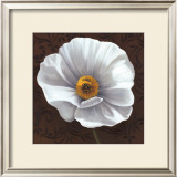 White Poppies I Posters by Jordan Gray