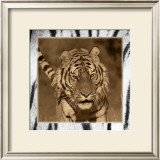 Tiger Views Posters by Susann & Frank Parker