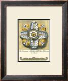 Blue and Yellow Rosette II Prints