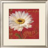Paris Blossom I Poster by Danhui Nai