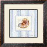 Sanibel Shell III Prints by Avery Tillmon