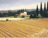 Golden Fields and Cypress Prints by James Wiens