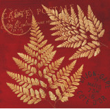 Crimson Fern Prints by Booker Morey