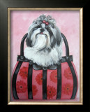 Shih-tzu Purse Poster by Carol Dillon