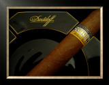 Cohiba Ready Framed Giclee Print by  erichan