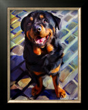 Handsome Rottie Posters by Robert Mcclintock