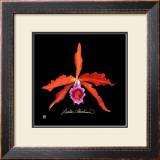 Vivid Orchid II Prints by Ginny Joyner