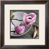 Magnolia on a Bowl Prints by Catherine Beyler