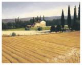 Golden Fields and Cypress Poster van James Wiens