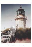 Lighthouse Beach Prints by D.k. Gifford