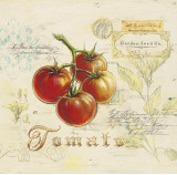 Tuscan Tomato Posters by Angela Staehling