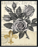 Fleur-de-Lis Rose Prints by Devon Ross