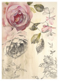 Ethereal Roses II Prints by Stefania Ferri