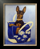 Min Pin To Go Prints by Carol Dillon