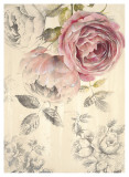 Ethereal Roses I Prints by Stefania Ferri