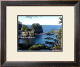 Cape Flattery Framed Giclee Print by Eric Curre