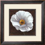 White Poppies I Prints by Jordan Gray