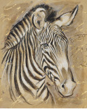 Safari Zebra Print by Chad Barrett
