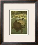Pond Turtles Posters by Louis Prang