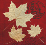 Crimson Maple Prints by Booker Morey