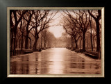 Rainy Day, Central Park Posters by Sergei Beliakov
