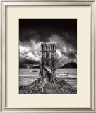 Stumped Poster by Thomas Barbey