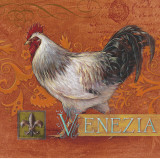 Venezia Rooster Poster by Angela Staehling