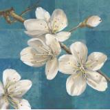 Blossom Branch Prints by Jurgen Gottschlag