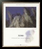 Toss Art by Francis Pelletier